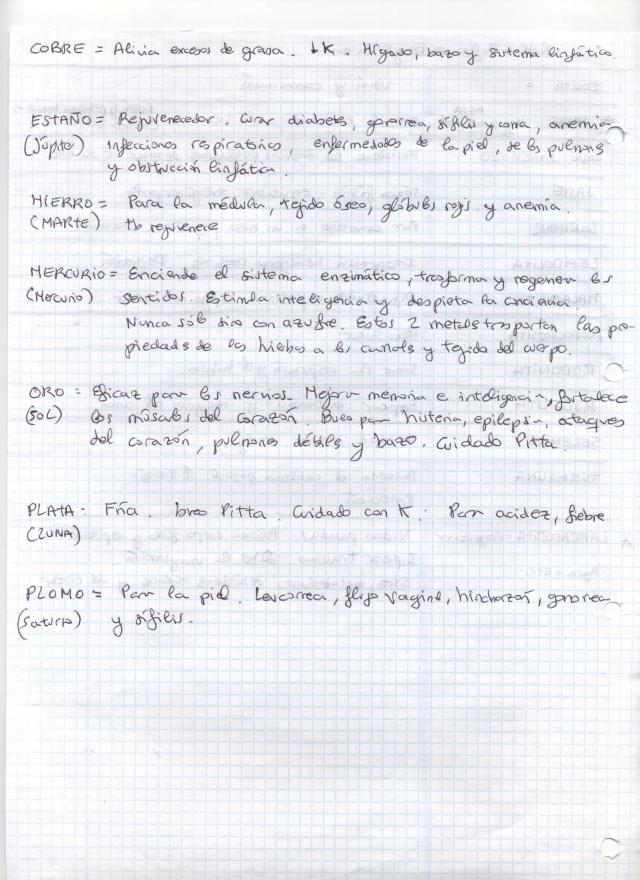 Imagen (11)