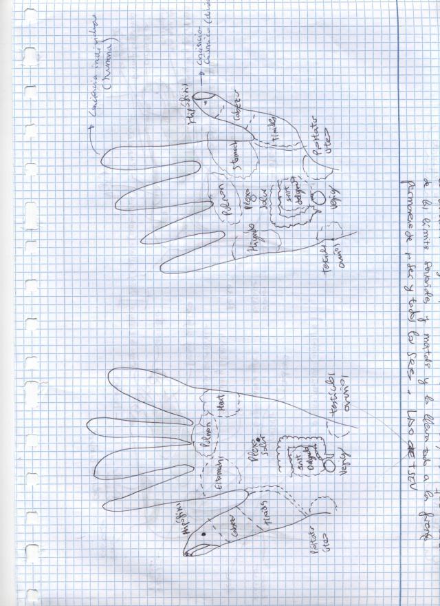 Imagen (7)