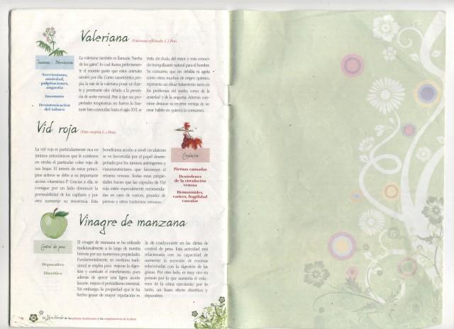 Imagen (14)