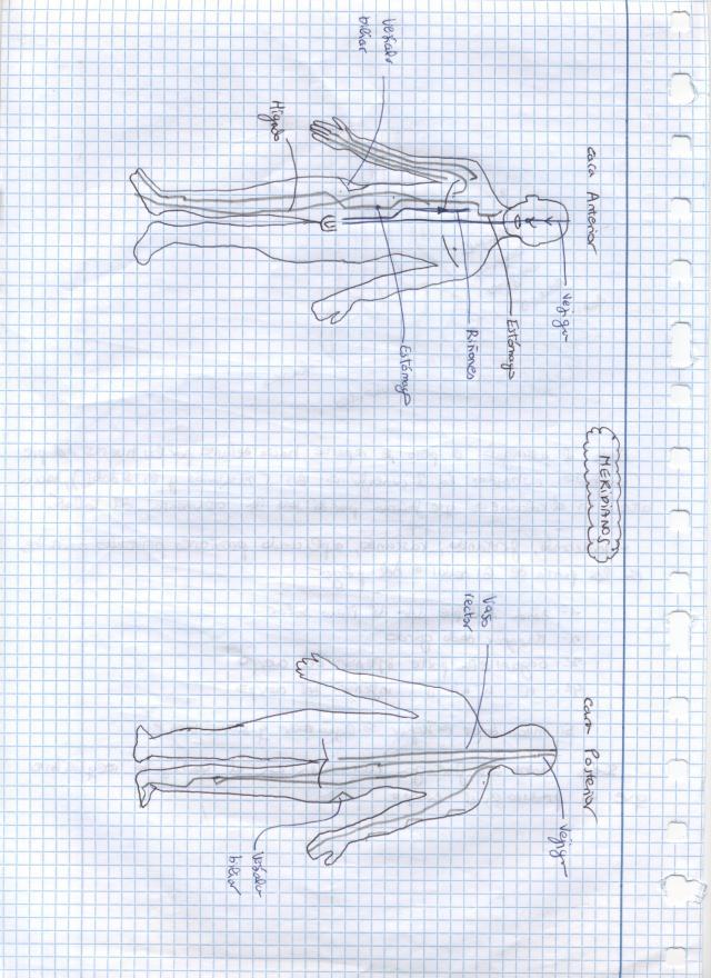 Imagen (2)