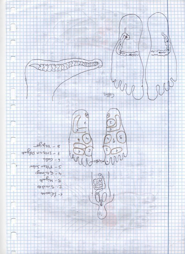 Imagen (5)