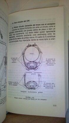 CIRCULOS DEL CHI