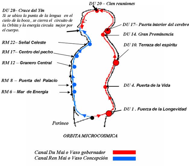 orbita_microcosmica1