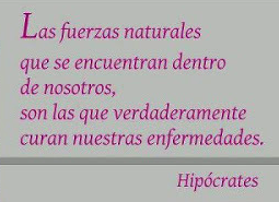 hipocrates 2